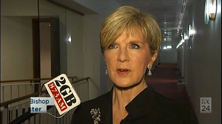 Palmer's Credlin comments 'particularly hurtful' says Bishop