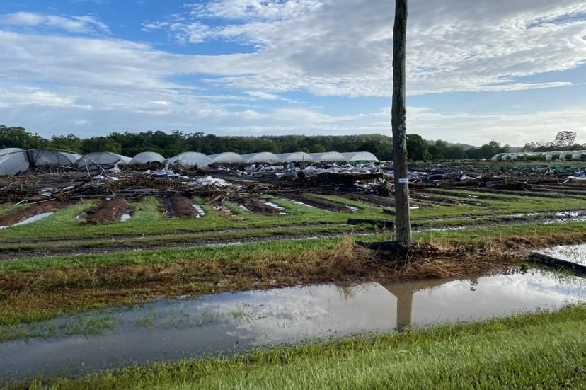 Floodwaters near greenhouses