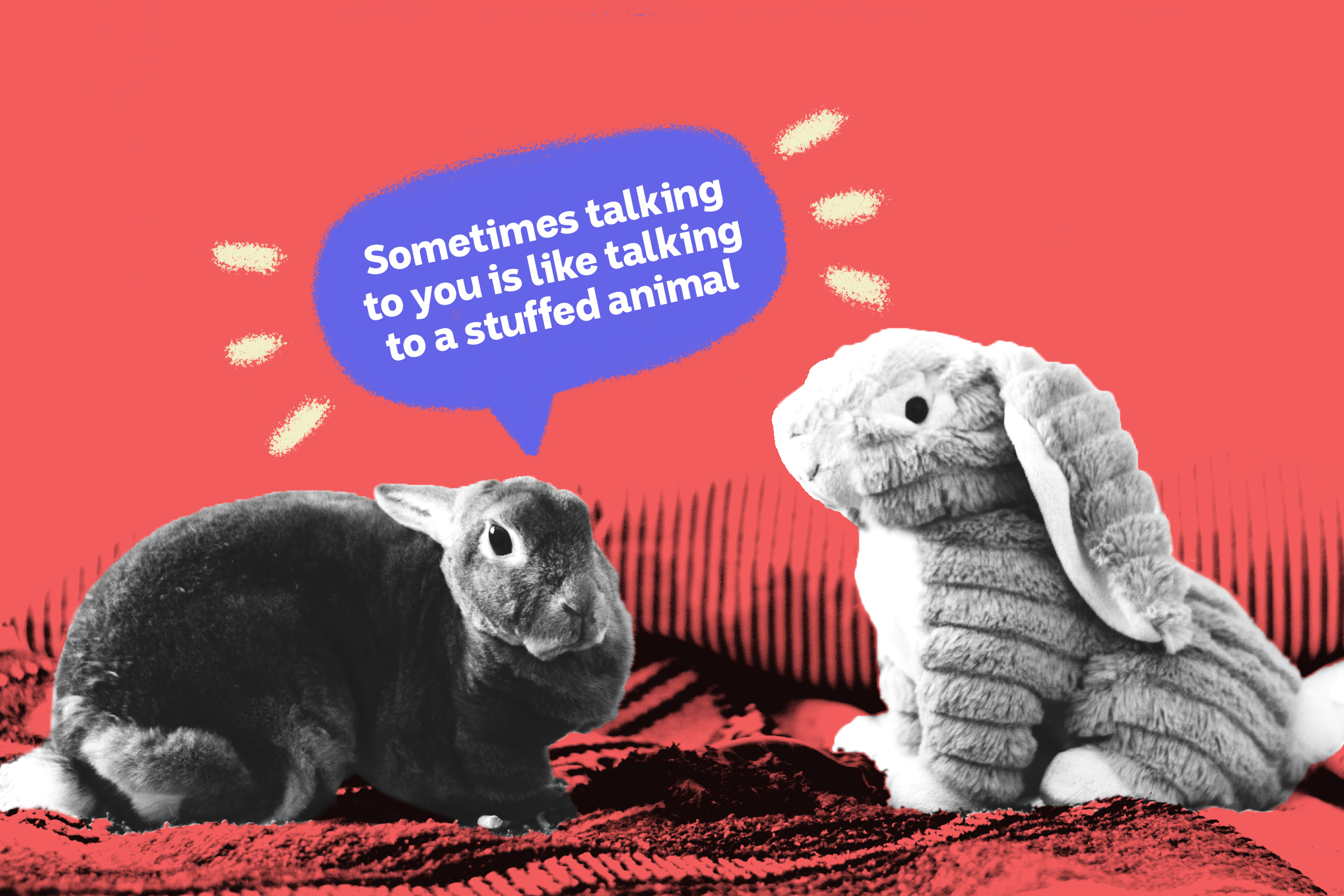 A live rabbit says to a stuffed rabbit: Sometimes talking to you is like talking to a stuffed animal