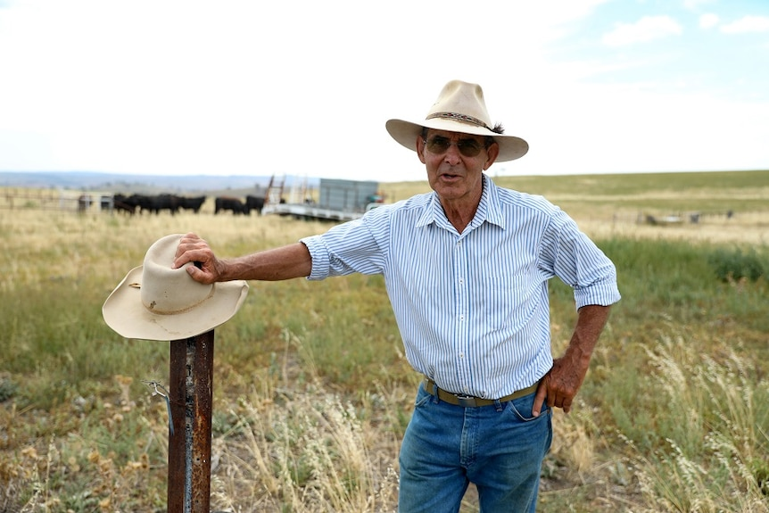 Farmer David Marsh leaning on a fence post with cattle and green grass in the background.