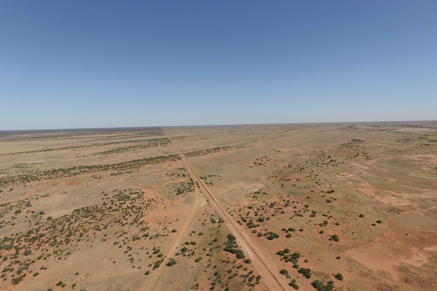 The dingo fence from the air