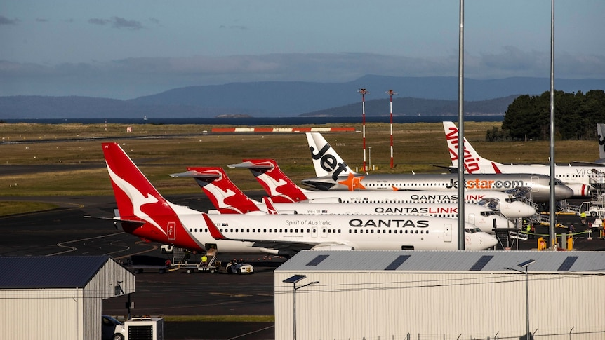 Five planes lined up side by side at Hobart International Airport.