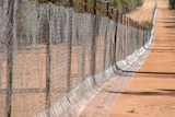 A netting wild dog fence with a skirt on the ground.
