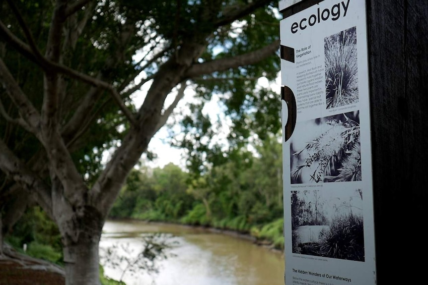 "A sign titled ""ecology"" talks about the role of vegetation."