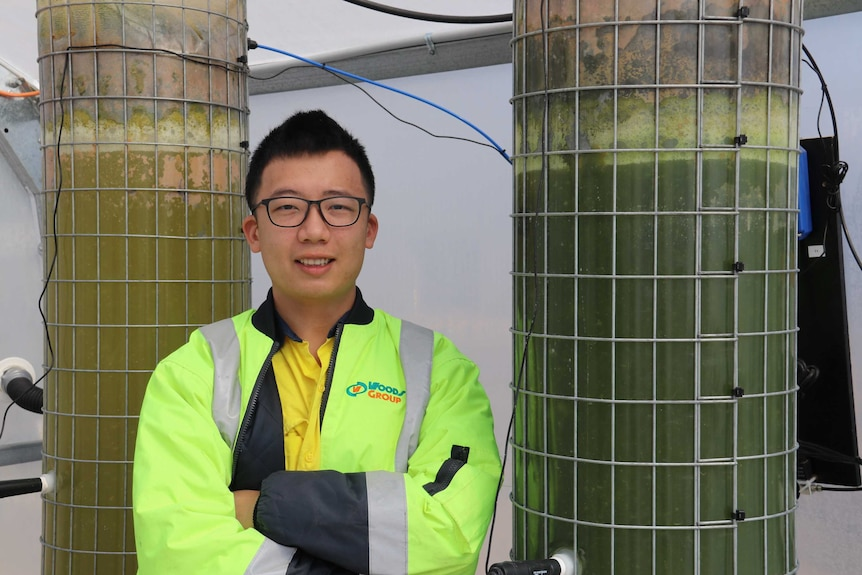 Kai Chen is standing in front of two plastic towers filled with algae in May 2020.