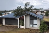 A tree sits on the roof of a house.
