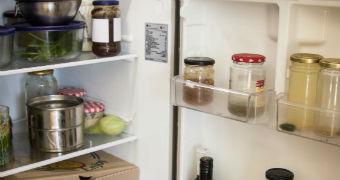 Lindsay Miles's plastic-free fridge contents