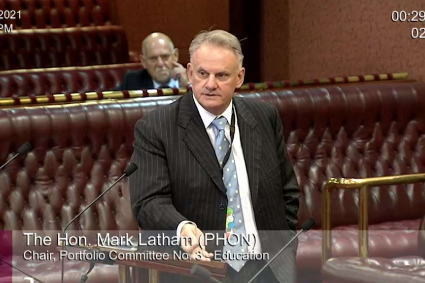 A video still of a grey-haired man in a pin-striped suit speaking in -a parliament building.
