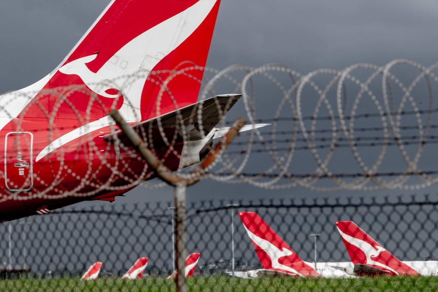 The tail of a Qantas plane can be seen through a fence sitting in an airport.