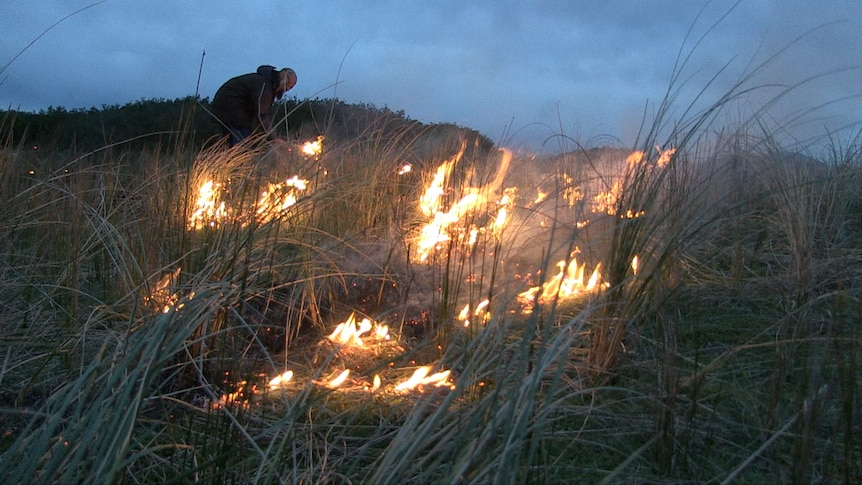 Grasslands burn on a cool, dark evening at the Indigenous Protected Area Preminghana