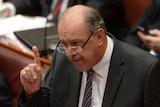 David Johnston speaks during Senate Question Time