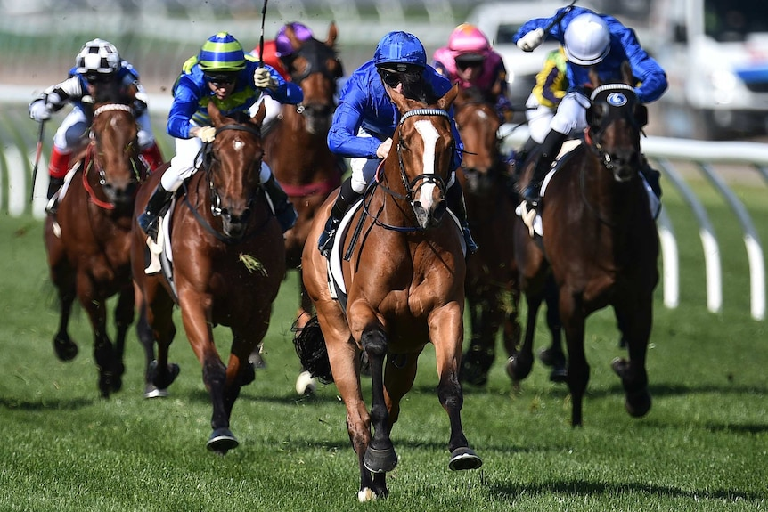 Hartnell wins the Turnbull Stakes