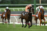 Black Caviar has an 18th straight win in her sights.