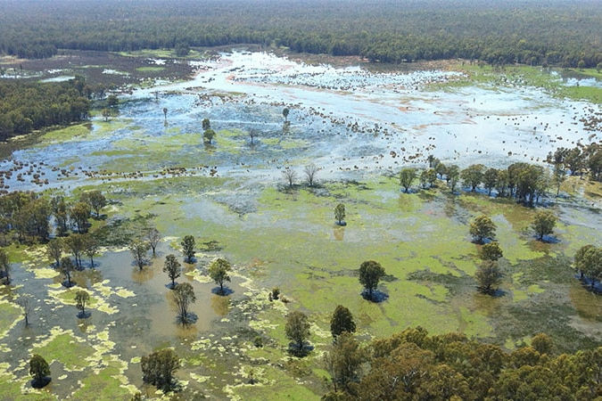 a picture of flooded wetlands from the air