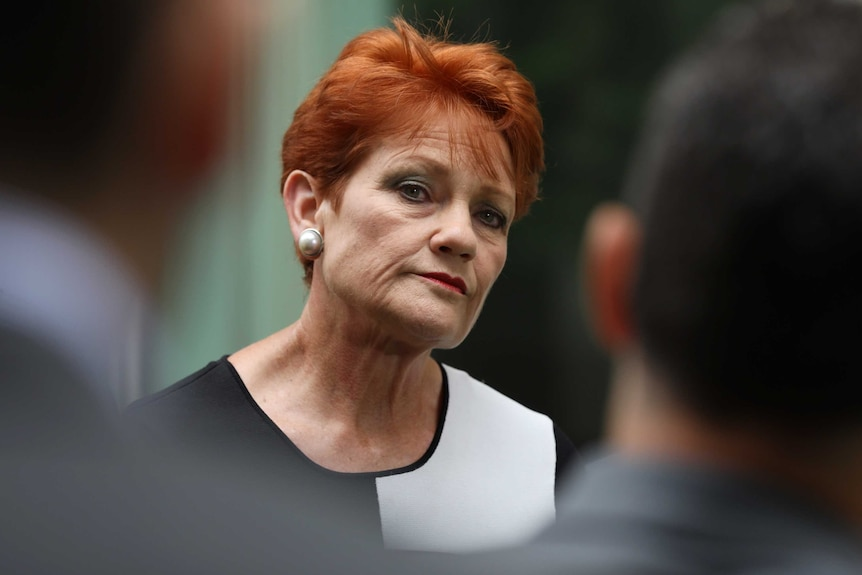 Pauline Hanson cocks her head to the side while looking down her nose between the shoulders of two men