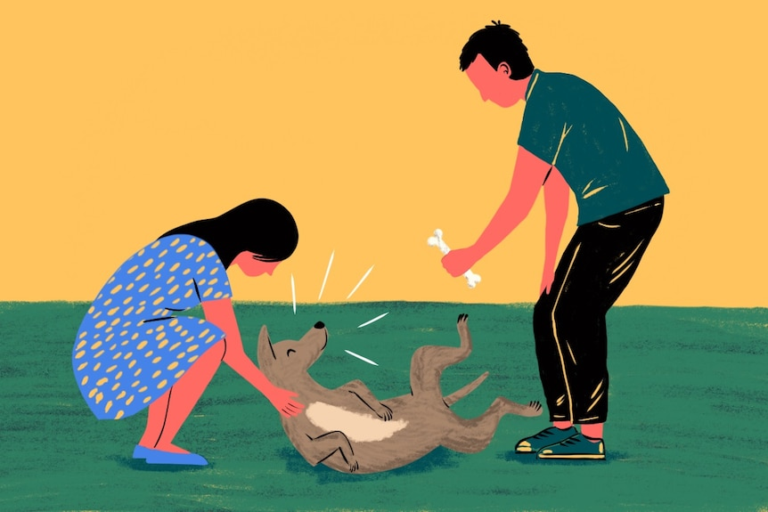 Illustration of two owners playing with their pet dog to depict a healthy resolution to a pet custody dispute.