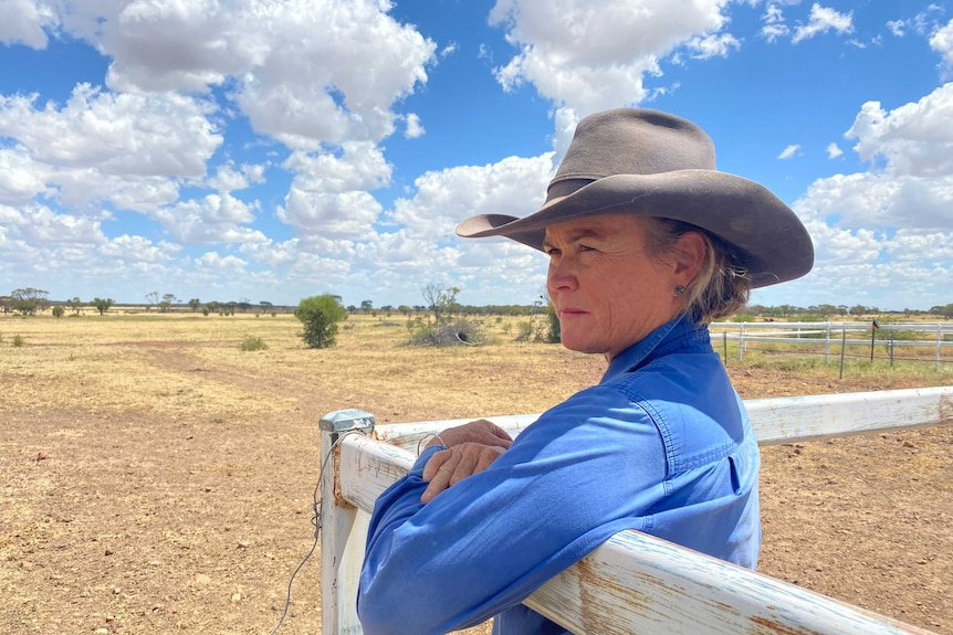 A woman in a work shirt and broad-brimmed hat leans on a fence, looking out over a rural property.