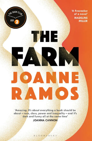 An orange a cream book cover, with a design that resembles pregnant bellies.