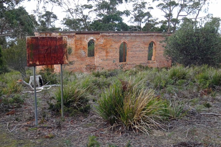 St Peter's church ruins on Bruny Island