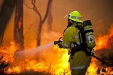 Seventy-one homes were destroyed in the bushfires in Roleystone and Kelmscott.