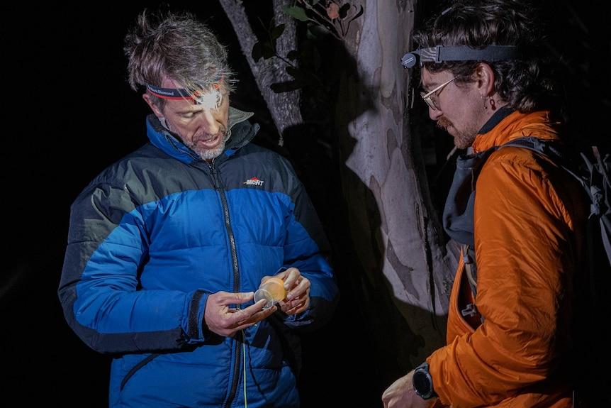Two men dressed in winter clothing and wearing spotlights on their heads inspect a beetle inside a vial.