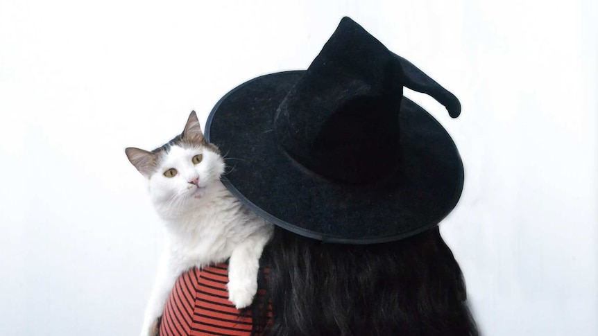 A woman in a black witch's hat holding a white cat