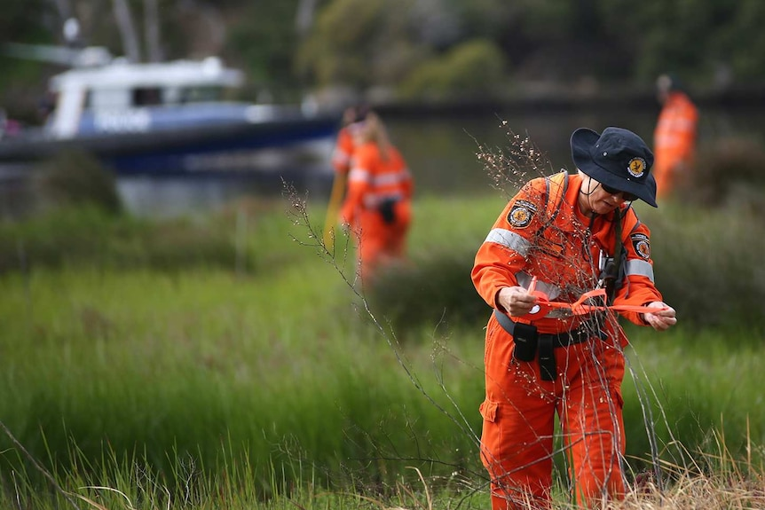 A SES worker in an orange uniform ties an orange ribbon onto reeds near a river as others search in the background.