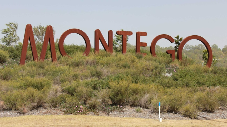 Large letters spelling out Montego stand amid shrubs.