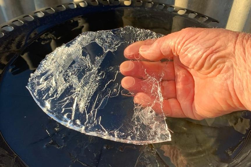 Water in bird bath frozen.