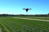 Drone flies over Nathan Roy's farm