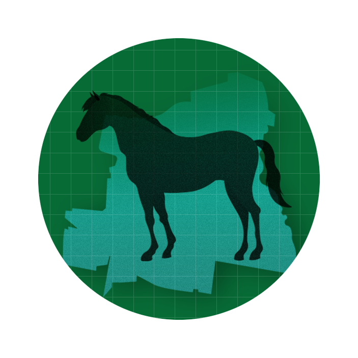 graphic with a green circle in the middle of which sits a horse
