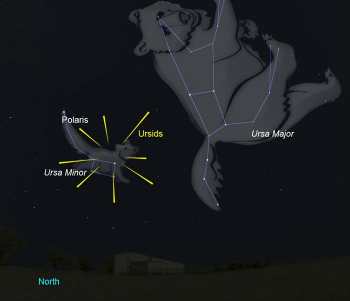 The position of the Ursids in comparison to Ursa Minor and Major