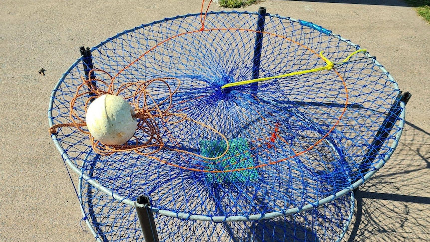 Play Audio. Crabbers no longer have to use witches hats in Lake Macquarie. Here's why. Duration: 4 minutes 21 seconds