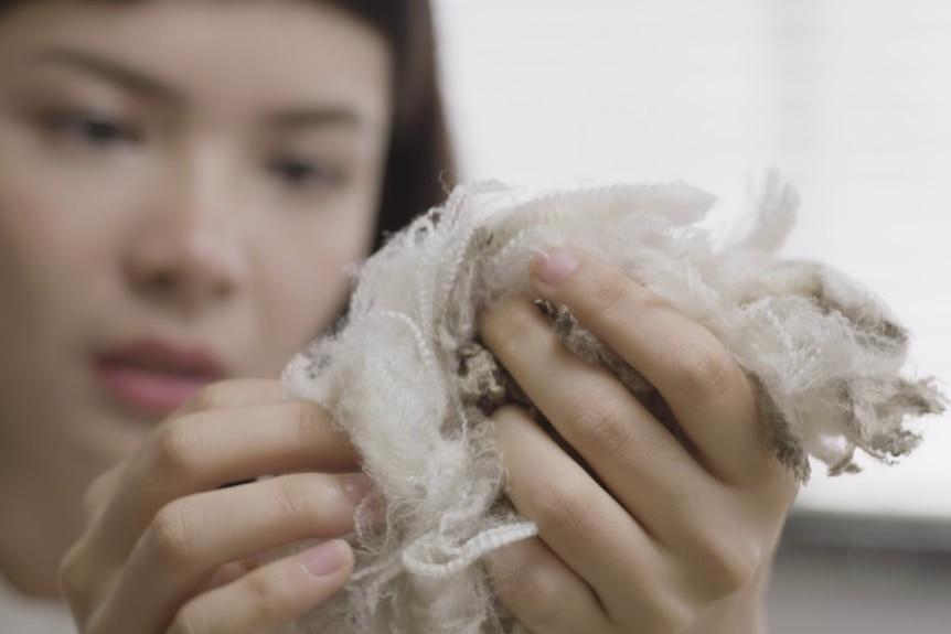 person holding merino wool