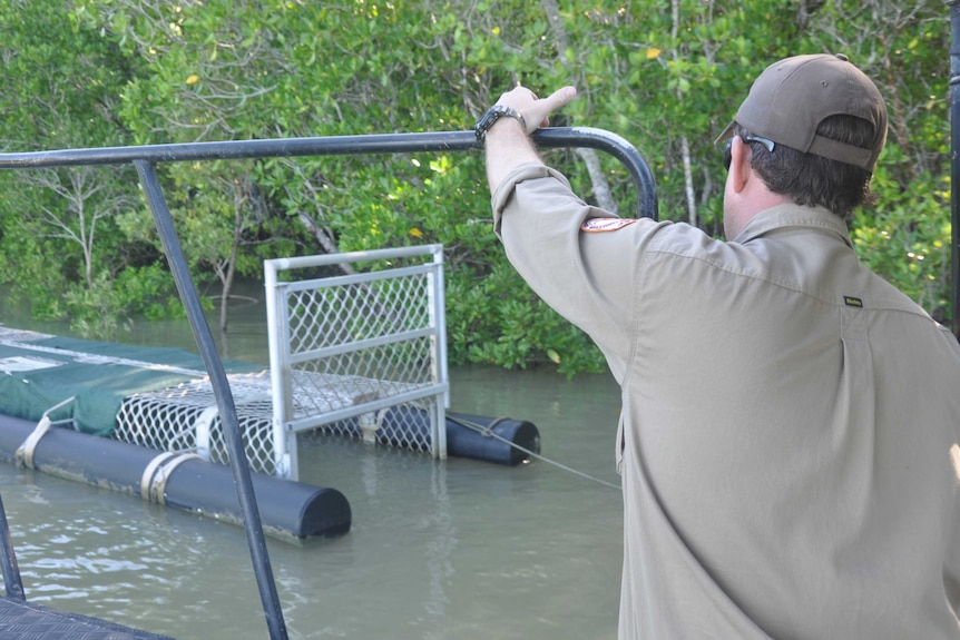 Wildlife ranger Ian Hunt assesses one of the croc traps in Shoal Bay.