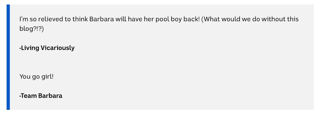 "Blog post saying ""I'm so relived to think Barbara will have her pool boy back! (What would we do without this blog?!)"""