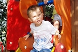 William Tyrrell playing on a  slide. William vanished from his grandmother's Kendall property, near Port Macquarie in September