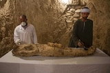 Egyptian excavation workers begin restoration work on the mummy discovered in the KAMPP 150 tomb.