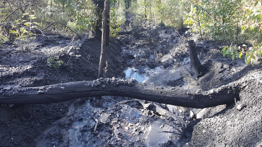 Lithgow pollution downstream