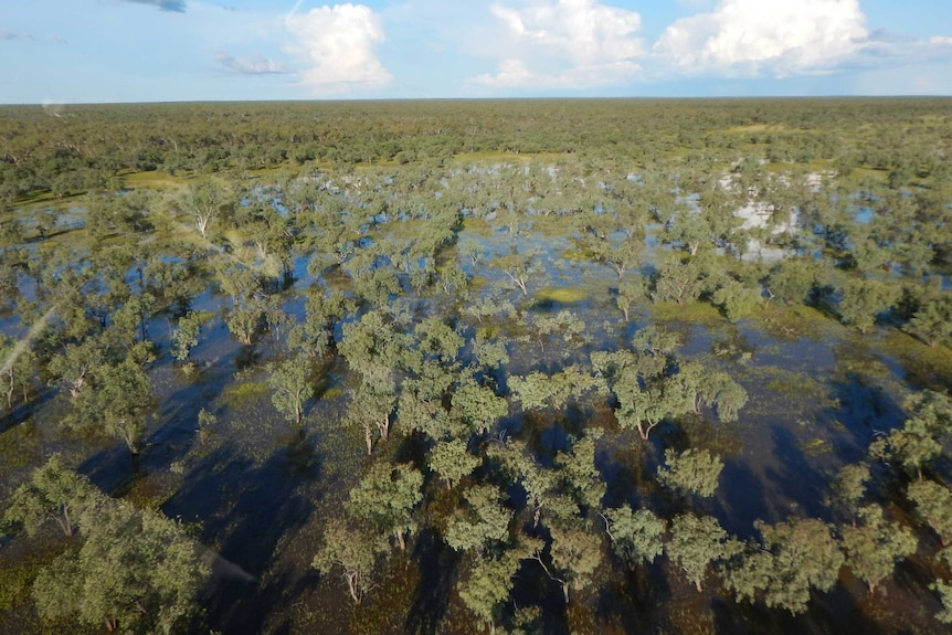 A photograph of the Beetaloo Basin in the Northern Territory