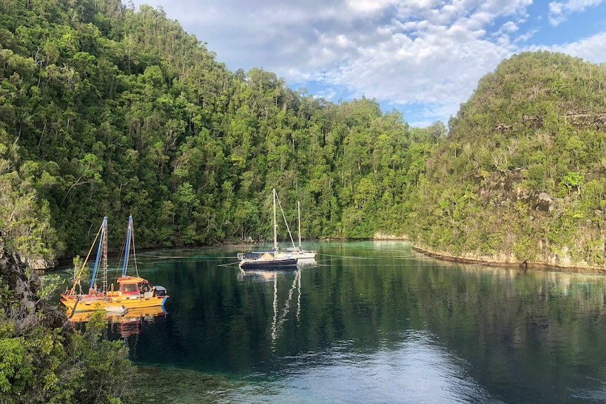 Peaceful calm cove surrounded by trees with three yachts anchored. Blue sky. One yacht is bright yellow.