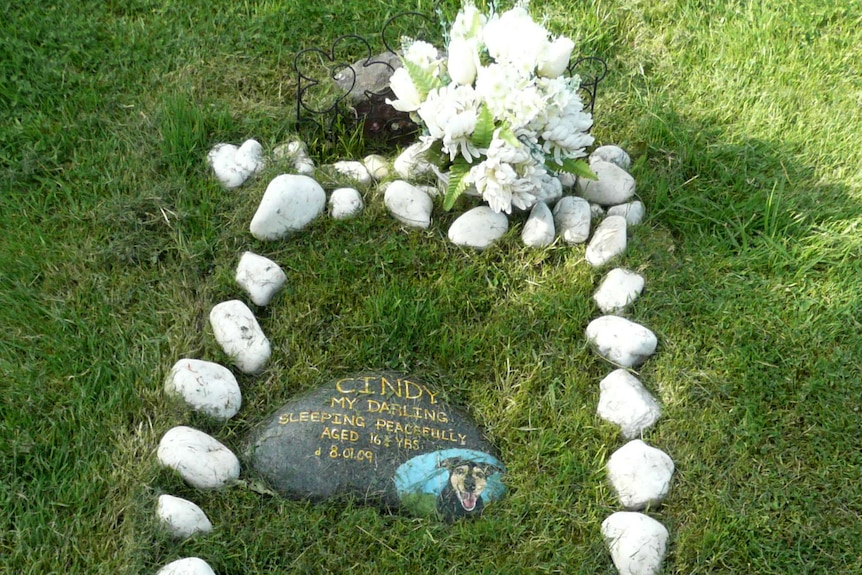Some stones in a garden marking a pet grave