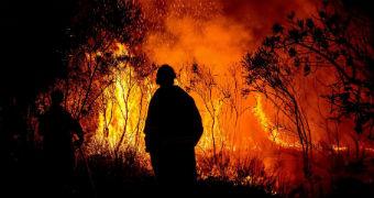Man patrols bushfire