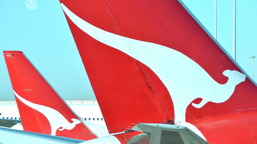 Qantas planes sit next to each other on the tarmac at Brisbane Airport, August 2014.