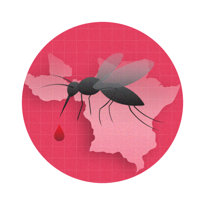 graphic with a pink circle in the middle of which sits a mosquito