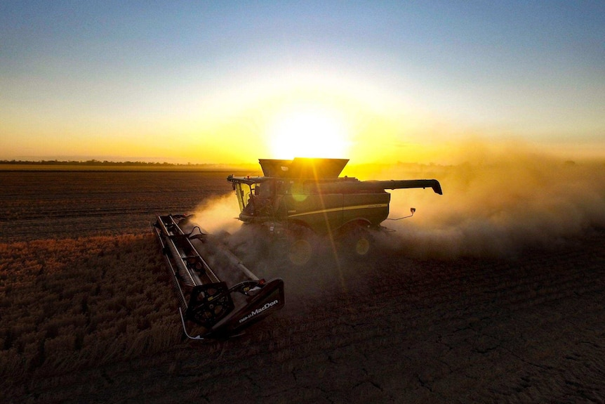 A harvester is silhouetted against the setting sun.