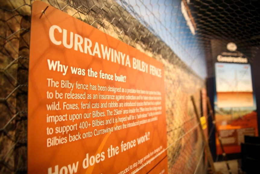 A wall featuring information on a fence that protects bilbies in western Queensland