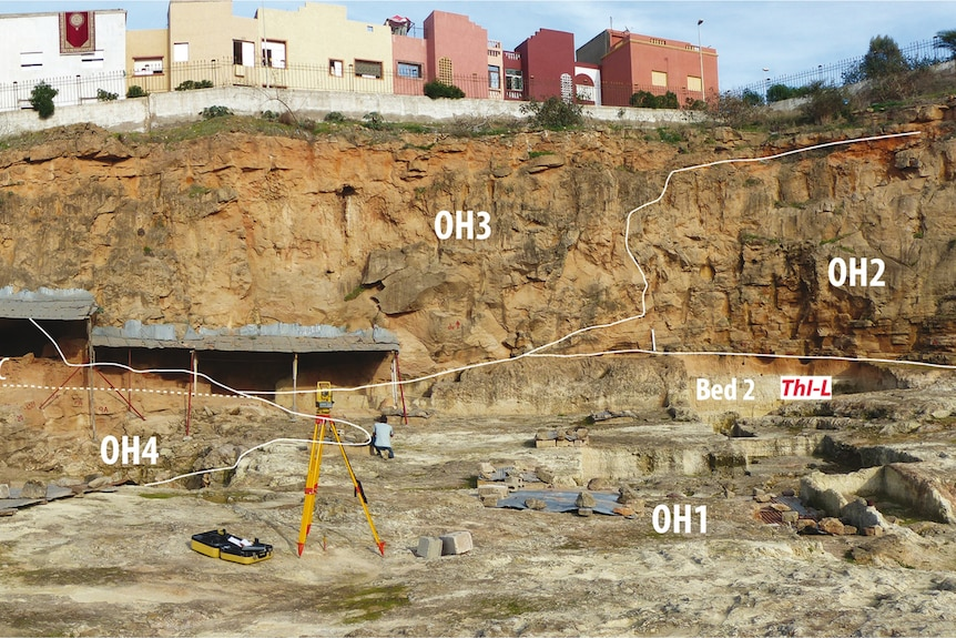 The excavation site with mark ups drawn across the image showing areas where artefacts were found.