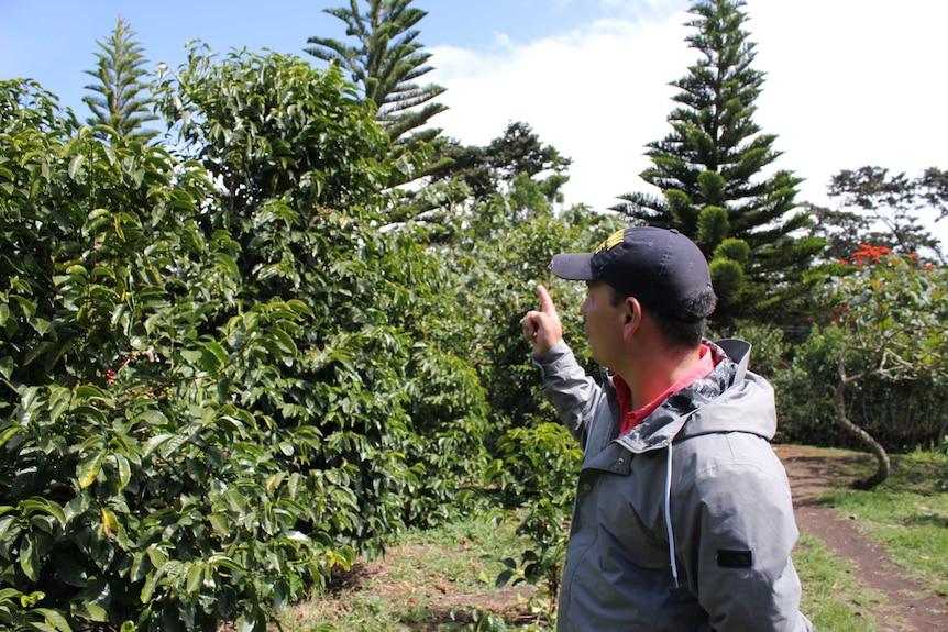 Landreth Laws, a coffee tourism operator in Boquete, Panama 2