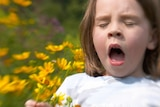 A girl holding a bunch of flowers about to sneeze.